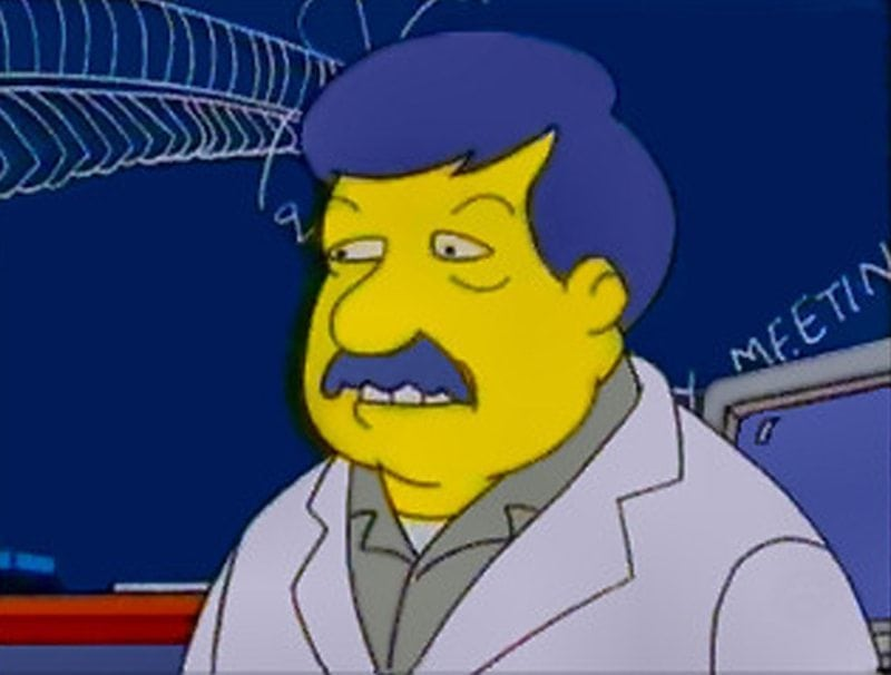 SJGould Simpsons 800