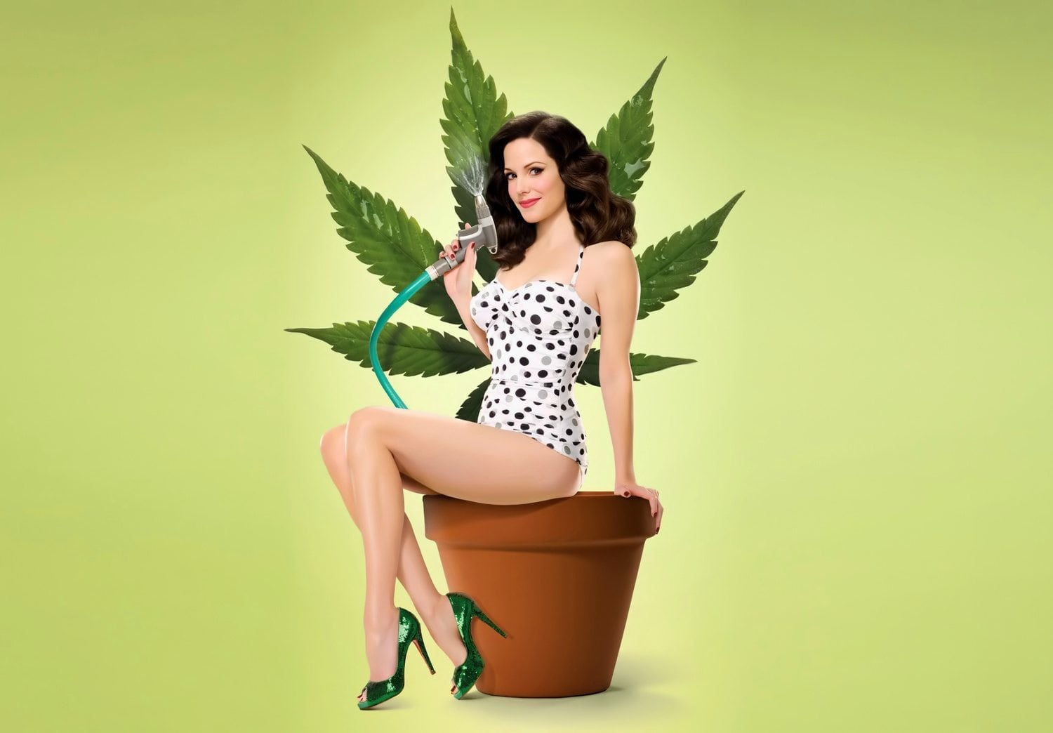 Weeds MaryLouiseParker plant 1500